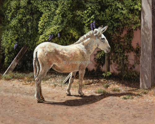 Burro and Wisteria