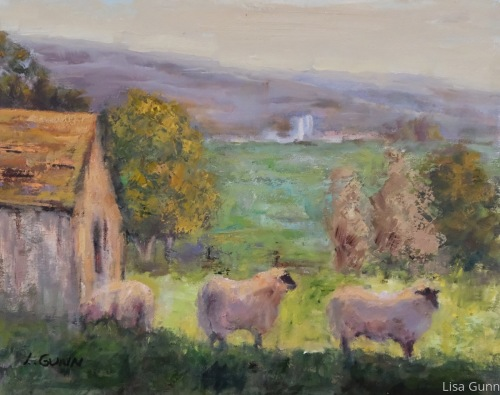 Tomales Bay Sheep