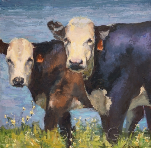 CROCKETT COWS
