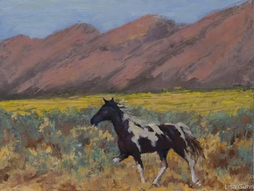 Wyoming Horse
