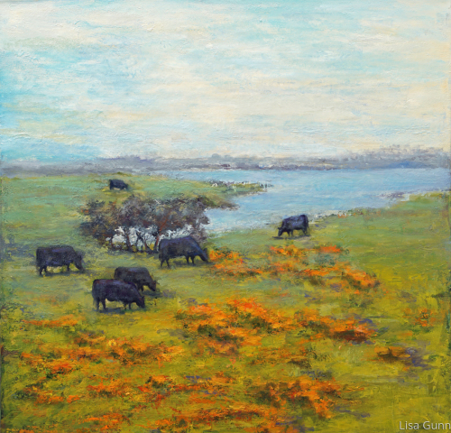 Half Moon Bay Cows
