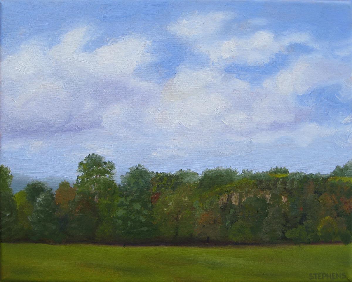 Eggleston Field (large view)