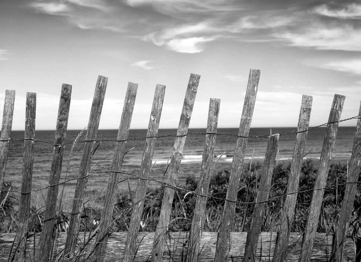 Snow Fence, Chatham Lighthouse, MA (large view)