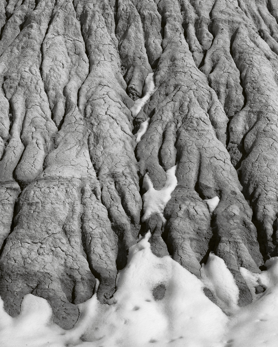 Long Logs - 2375, Petrified National Forest, AZ (large view)