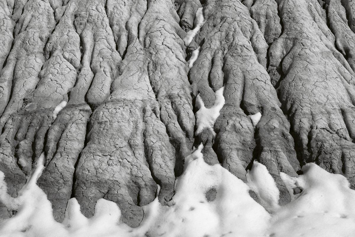 Long Logs - 2372, Petrified National Forest, AZ (large view)