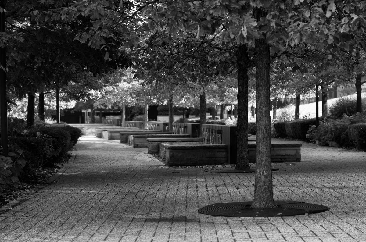Park Benches, Chicago, IL (large view)