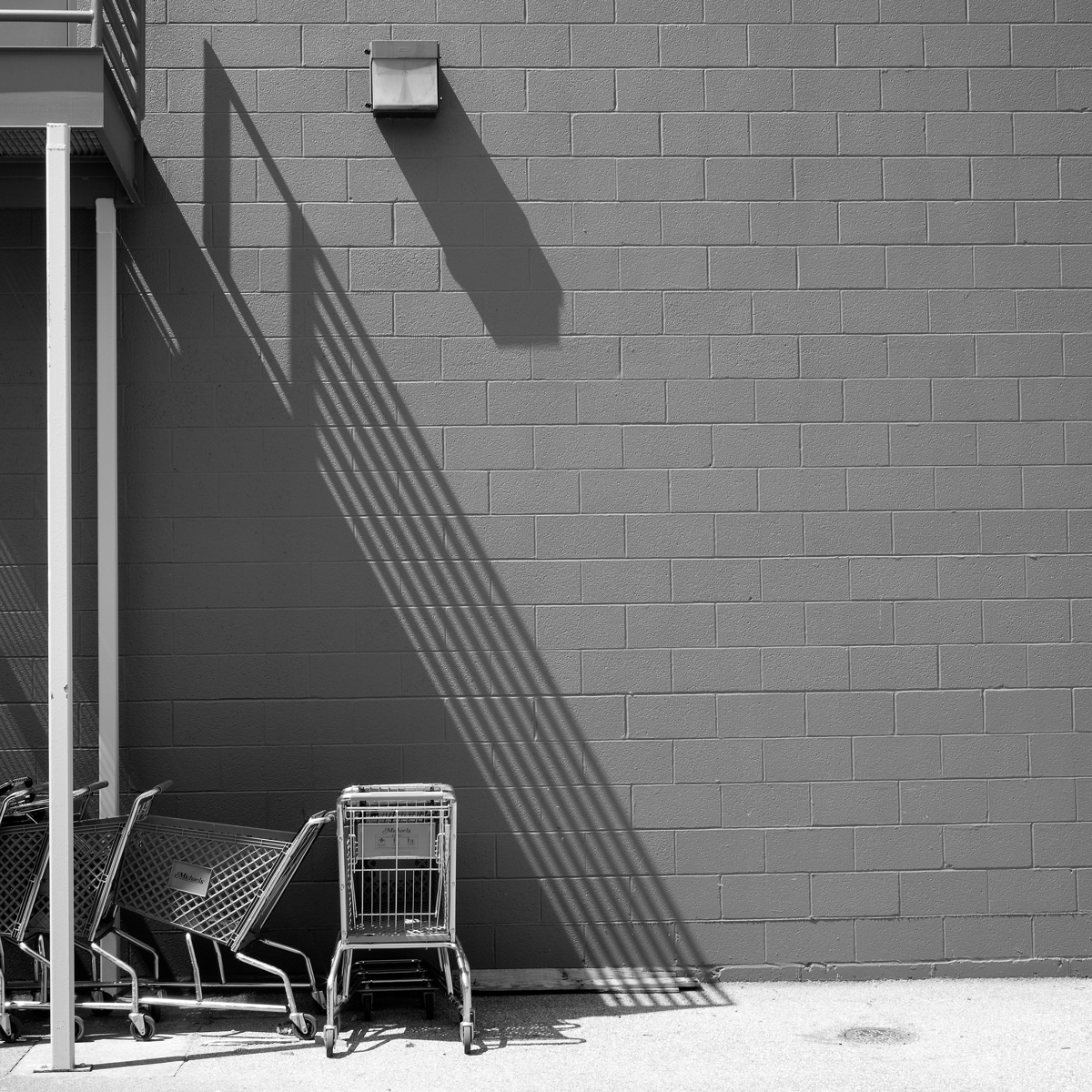 Shopping Carts, Mechanicsburg, Pennsylvania (large view)