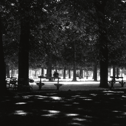 Contemplation  - Luxembourg Gardens, Paris, France