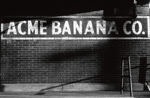 ACME Banana - Pittsburgh, Pennsylvania