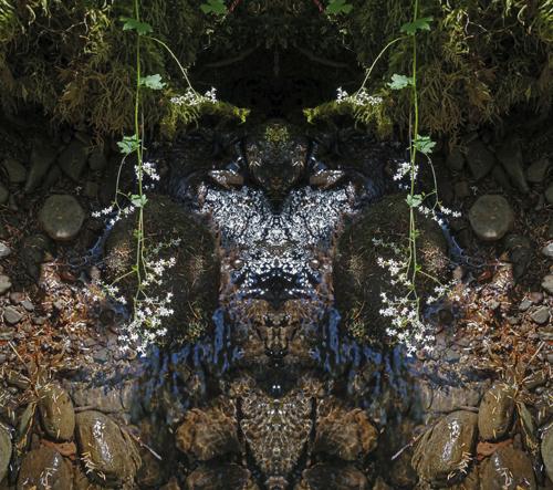 Mirror 1272 no. 2/11