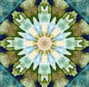 Waterlily (thumbnail)