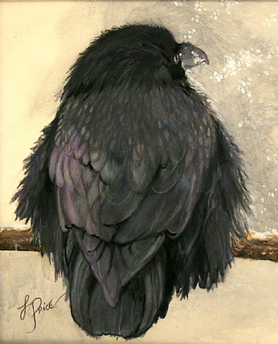 Raven #2 by Louise Price