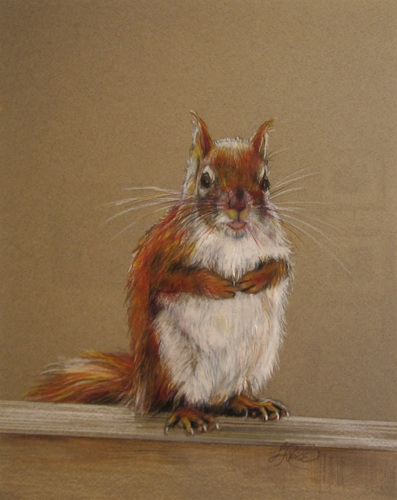 Squirrel #1 by Louise Price