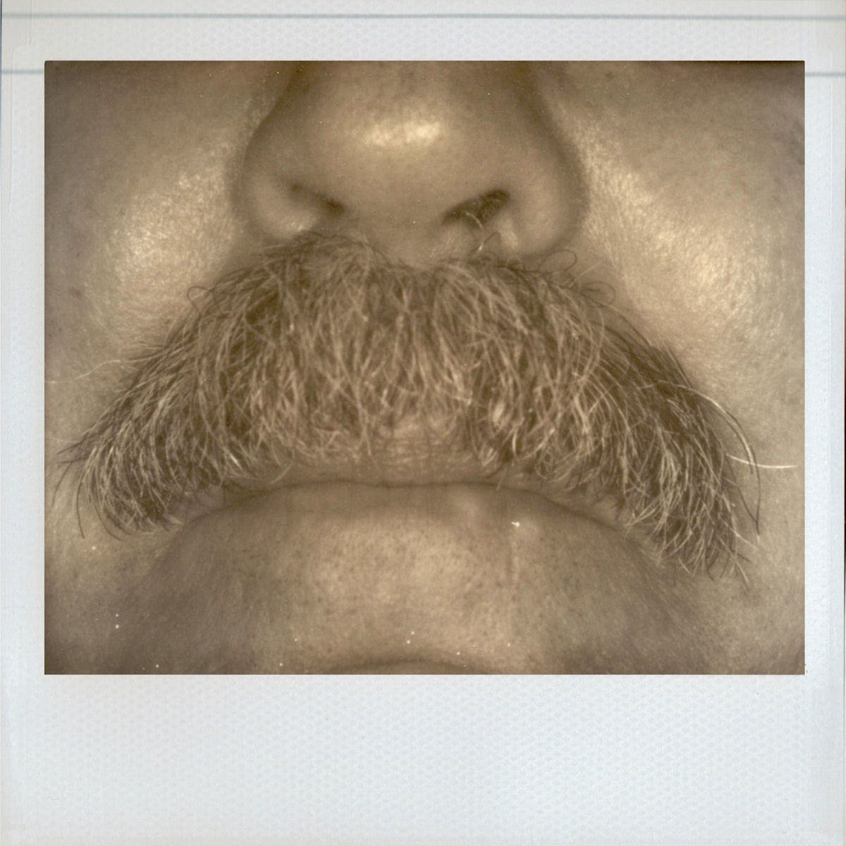 Impossible Mustache (large view)