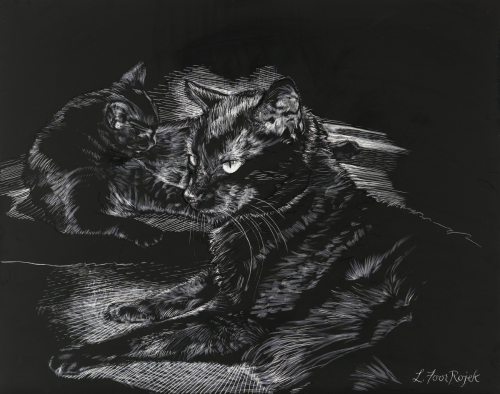 Black Cats 2