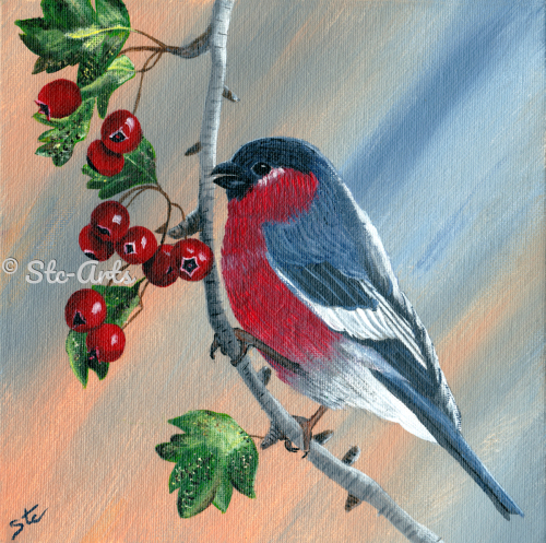 Robin with Berries by Stc Arts
