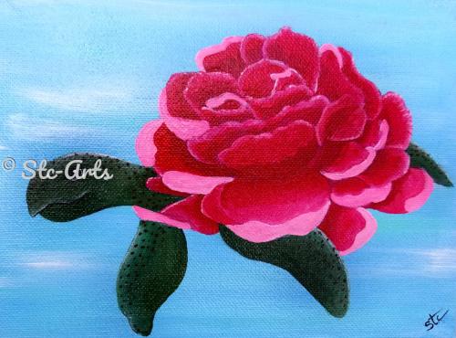 Sea Turtle Camillia by Stc Arts