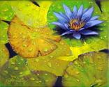 Purple Lilly (thumbnail)