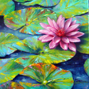 Pink Lilly (thumbnail)