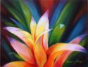Bromeliad (thumbnail)
