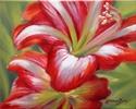 In Bloom (thumbnail)