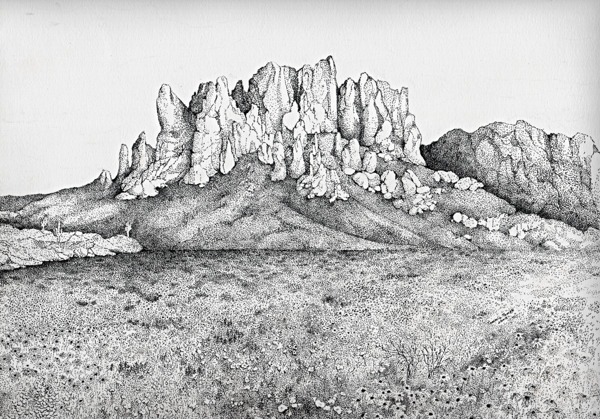 Drawing Quot Superstition Mountain Wildflowers Quot Original