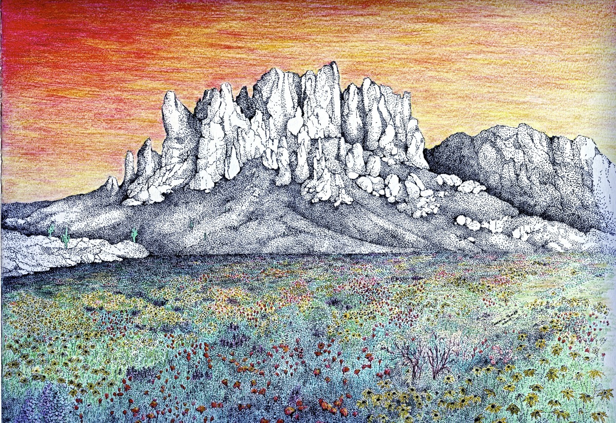 Drawing Quot Superstitions Mountain Wildflowers Quot Original
