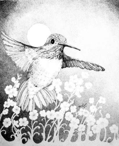 Moonlit Night Hummingbird