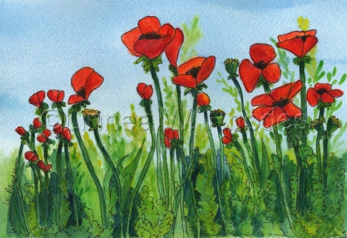 poppies-III by Linnea W. Rhodes