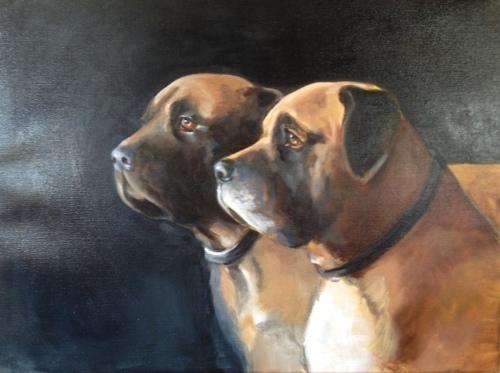 Mastiffs: Big Boys, commission