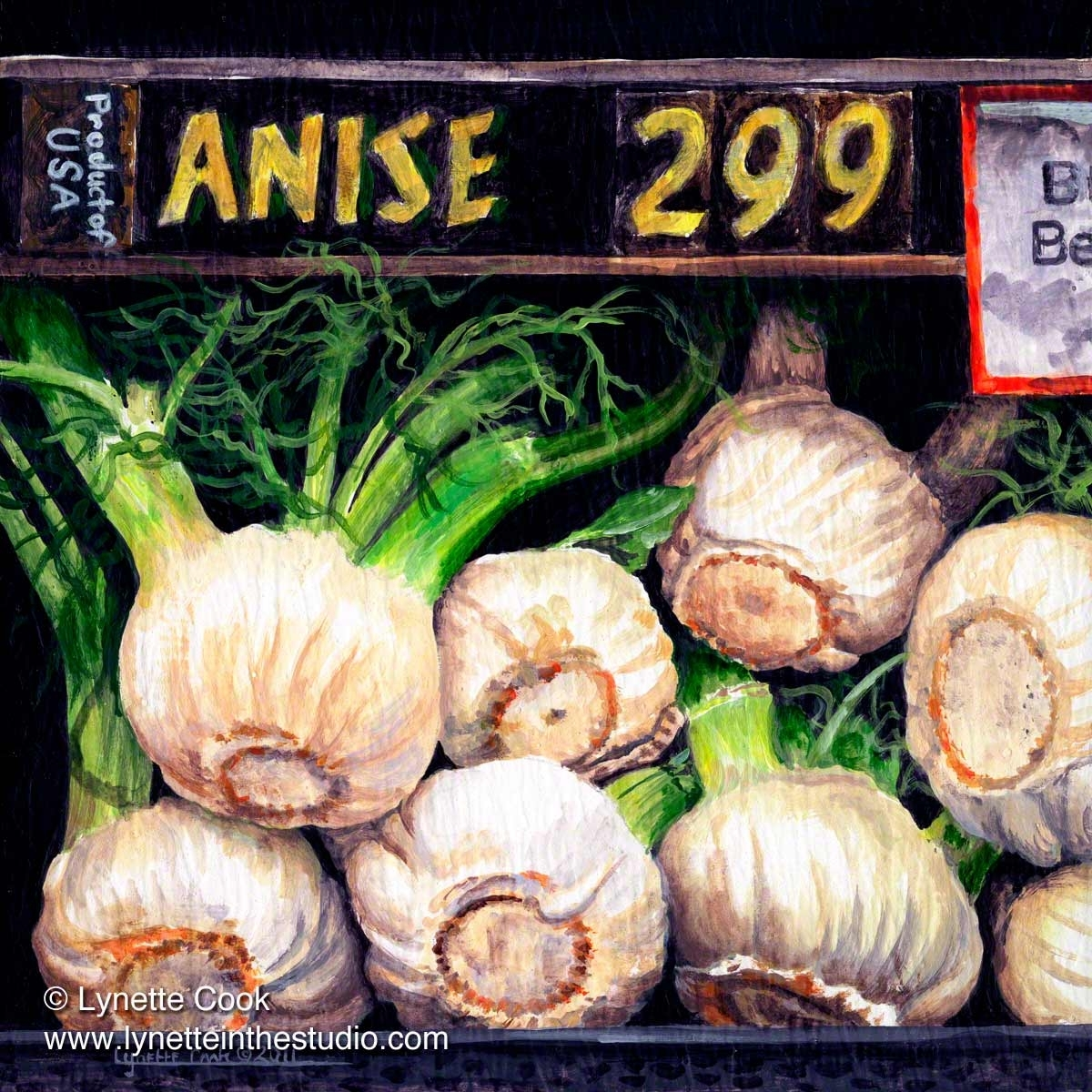 Anise for Sale (large view)