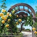 Garden Retreat (thumbnail)