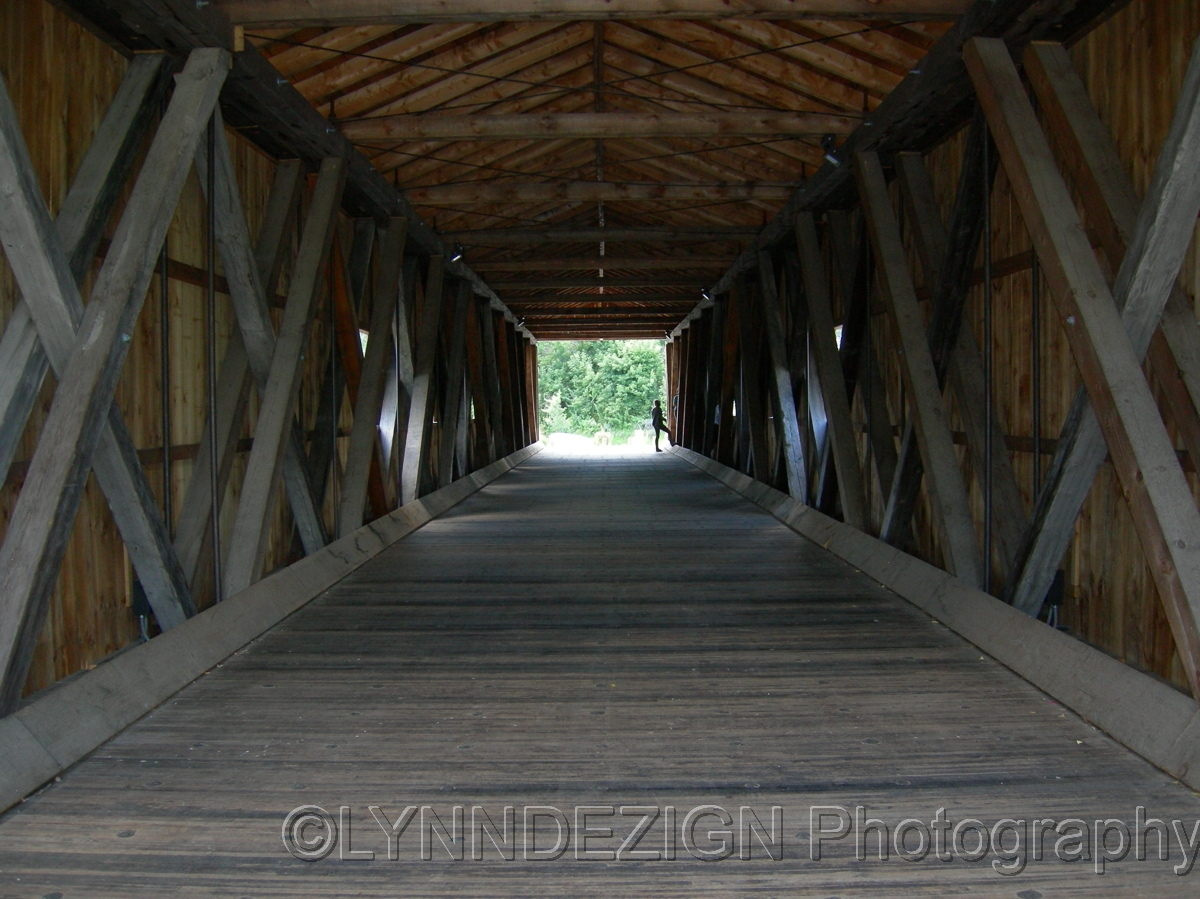 Bridge Perspective (large view)