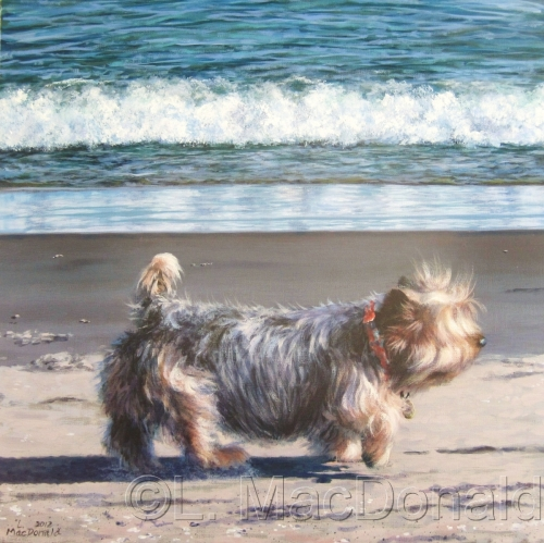 The Routine Life of a Gloucester Dog by Lori MacDonald Fine Art