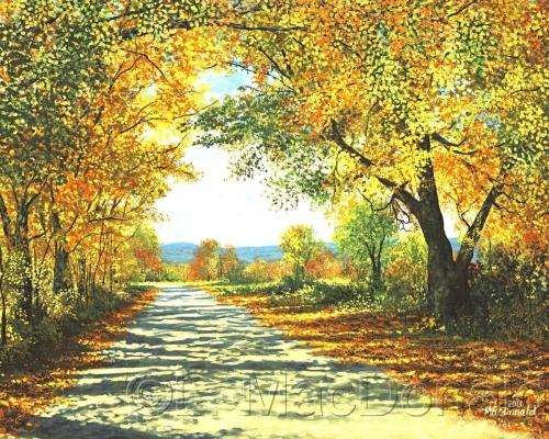 Autumn Canopy by Lori MacDonald Fine Art