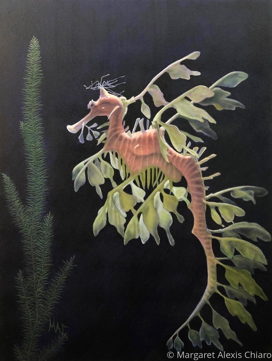 Dreamlike Dragon (large view)