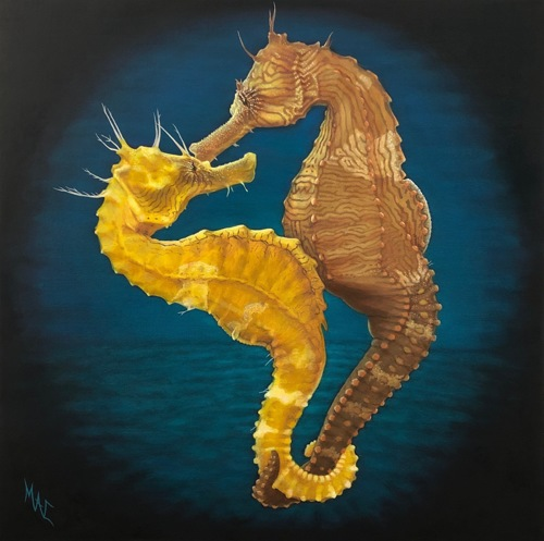 Sentimental Sea Horses