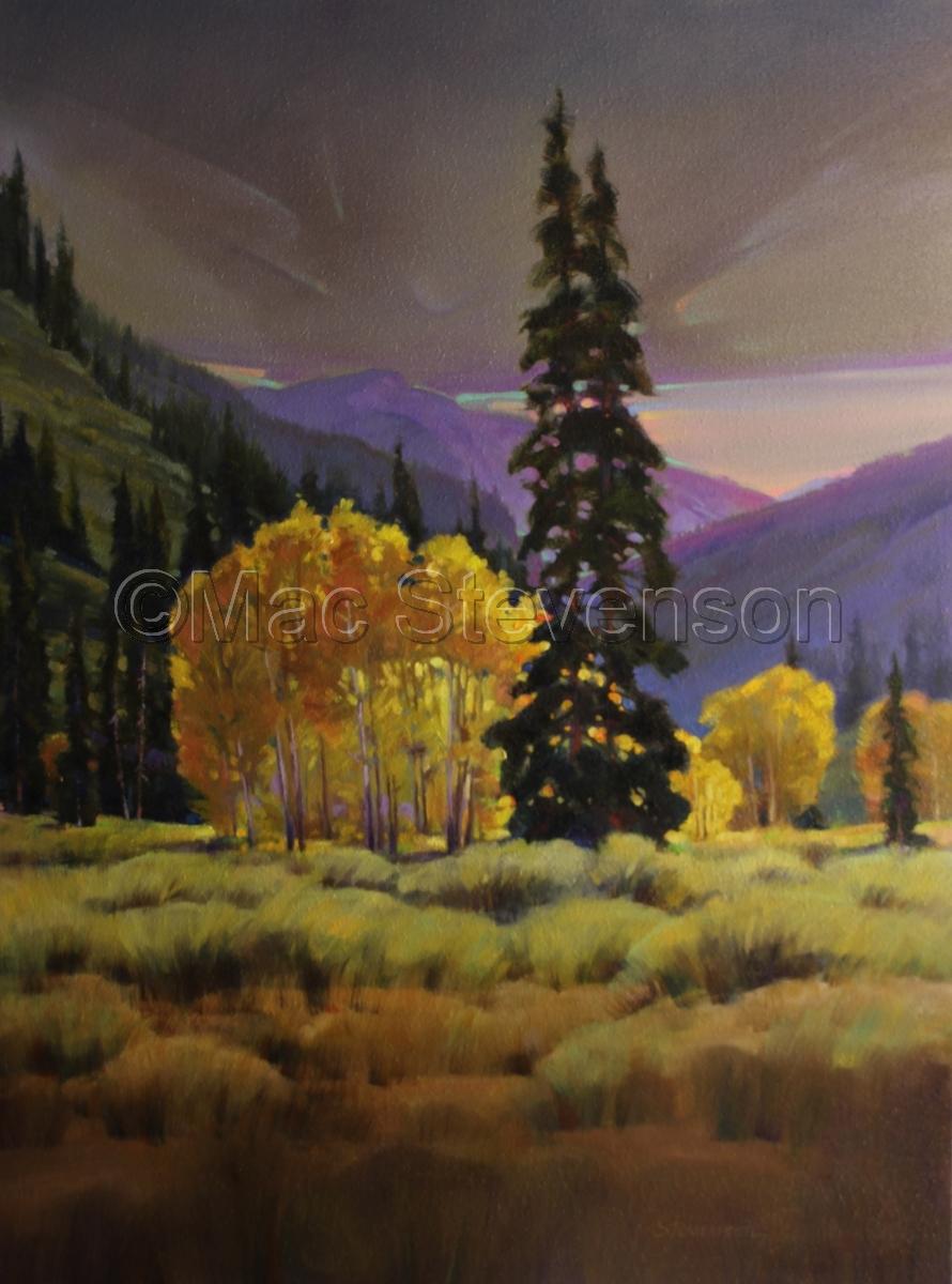 Aspen Glow (large view)