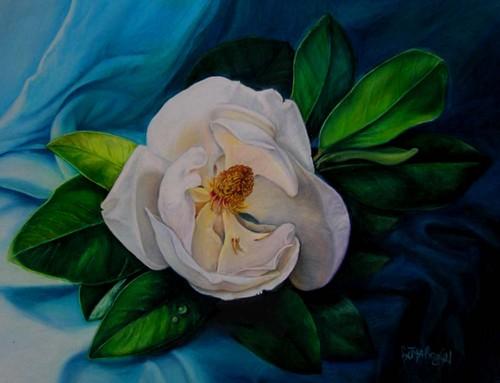 Magnolia on Blue