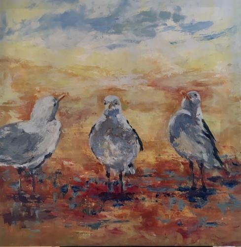 Small Point Gulls