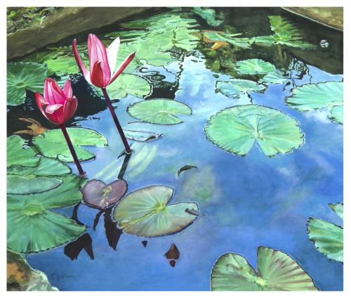 Kauai Water Garden