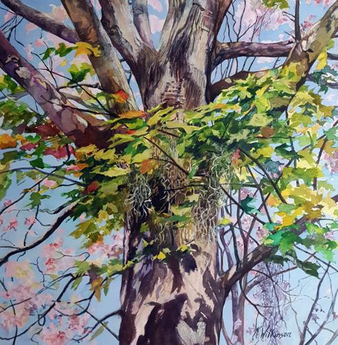 Maple in Fall by Rebecca Wilkinson Studio