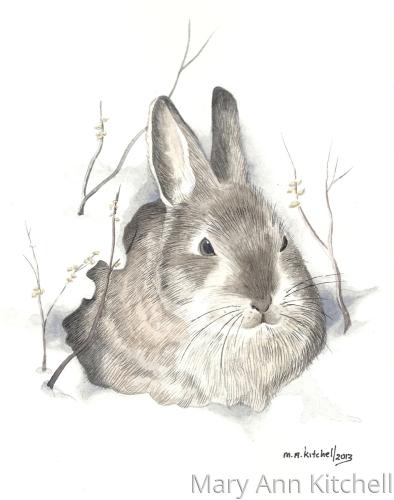 Rabbit in Snow (print)