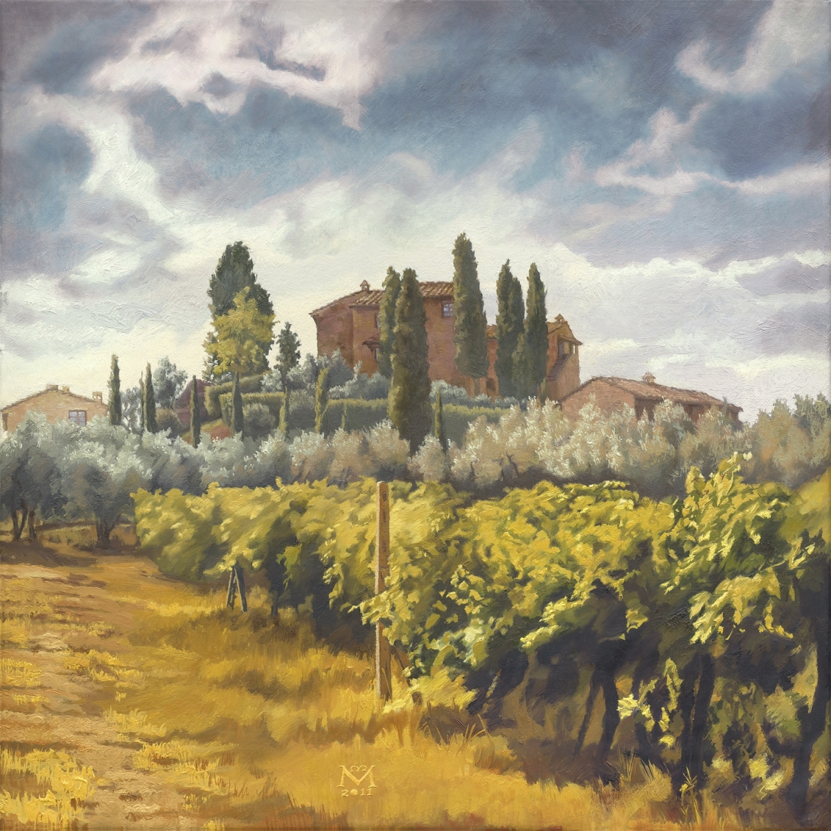 The Vineyards Of Montagnana Under A Universally Enigmatic Sky (large view)