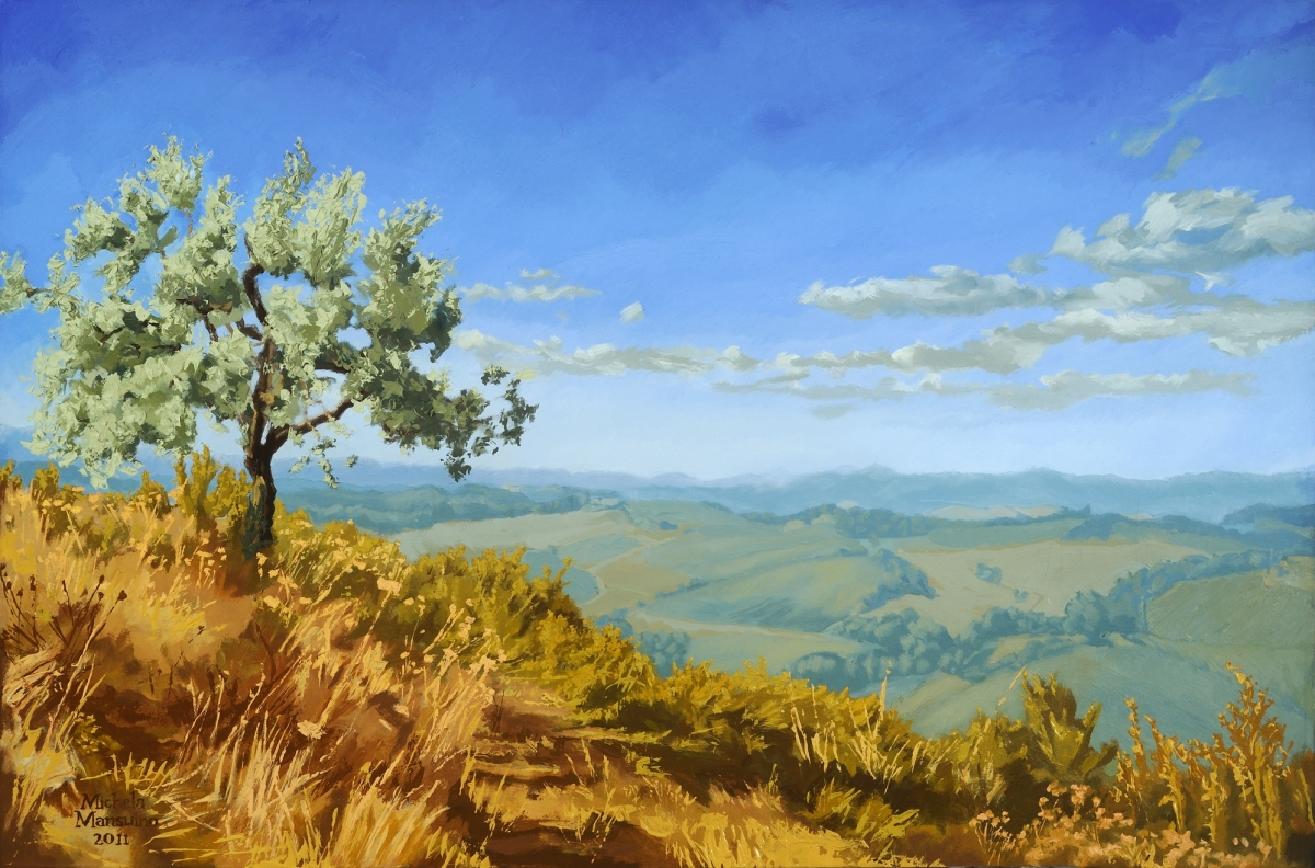 This painting describes the high afternoon light on the silver green branches of an unusually gestural olive tree with Queen Ann's Lace growing all around it.  There are vineyards and blue mountains in the distance, bright blue sky, puffy clouds (large view)