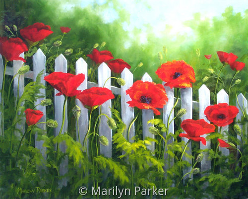 Poppies & Pickets