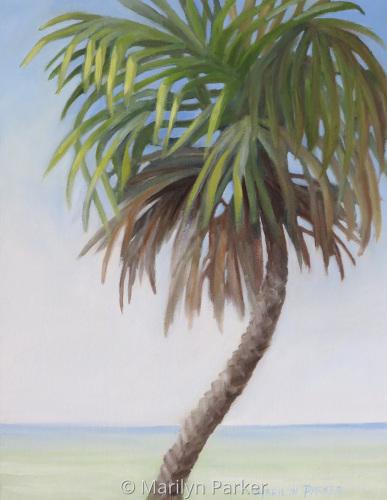 Palm Etude