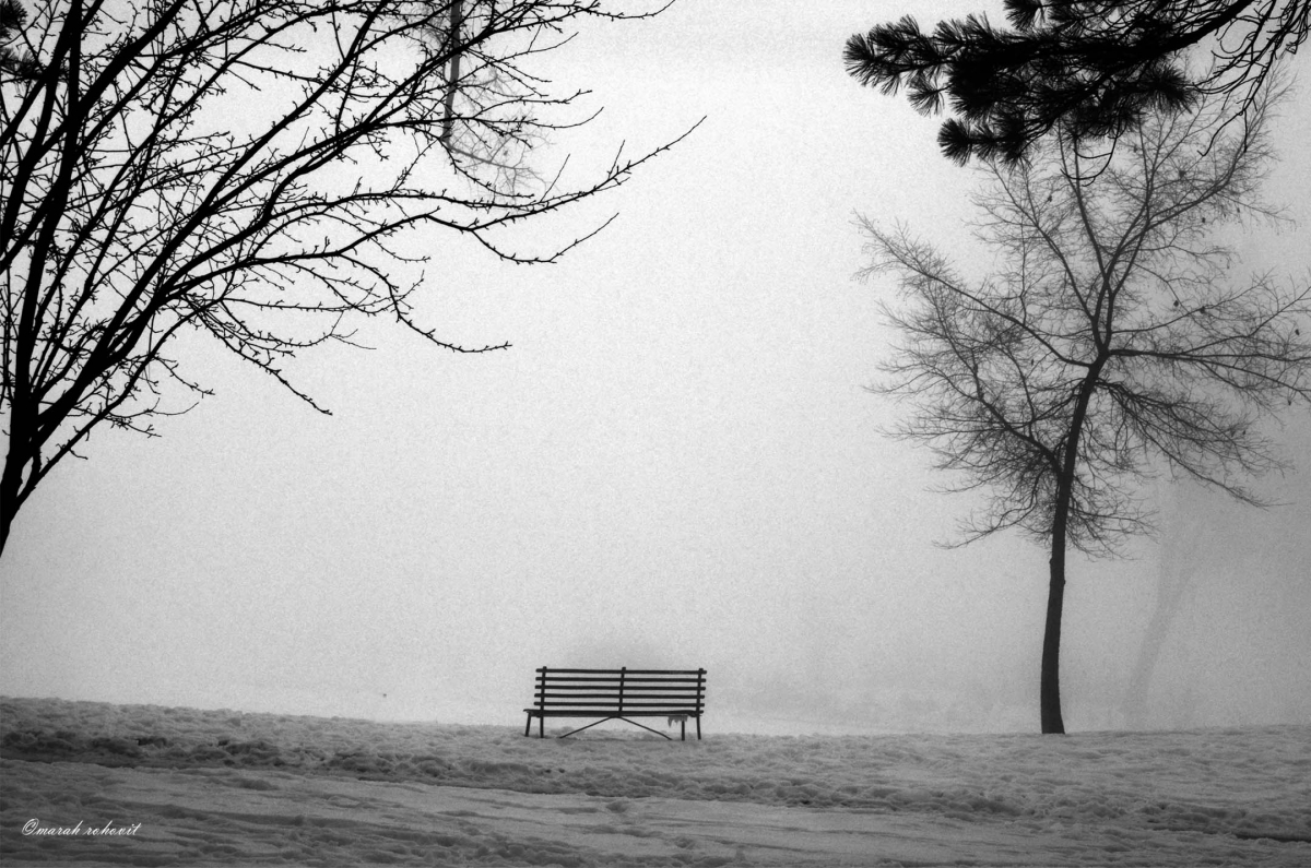 Solitude (large view)