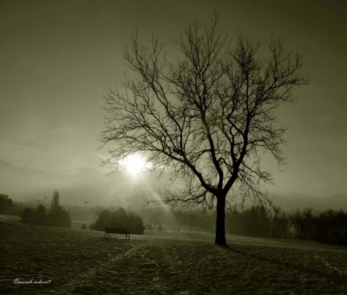 Celestial Morning by marah rohovit photography: