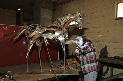 horse in progress